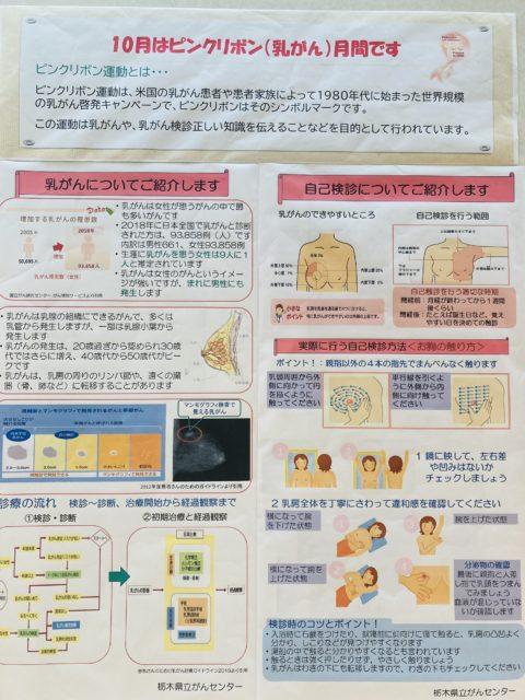 3CDC0D22-938F-4F73-AEA4-D475702A4A0E
